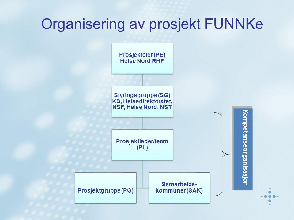 Prosjekteier (PE) Helse Nord RHF Styringsgruppe (SG) KS, Helsedirektoratet, NSF, Helse Nord, NST Prosjektleder/team (PL) Prosjektgruppe (PG) Samarbeids- kommuner (SAK) Kompetanseorganisasjon Organisering av prosjekt FUNNKe