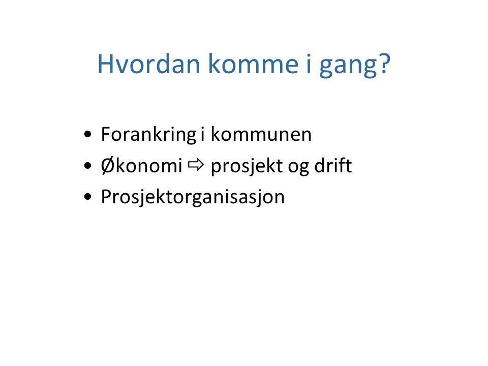 Hvordan komme i gang? Forankring i kommunen Økonomi  prosjekt og drift Prosjektorganisasjon
