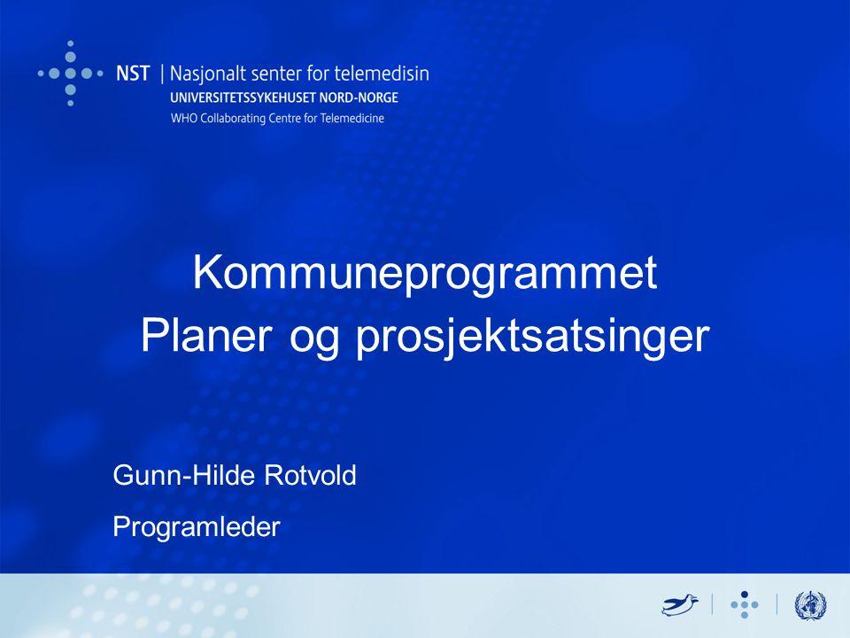 Kommuneprogrammet Planer og prosjektsatsinger Gunn-Hilde Rotvold Programleder