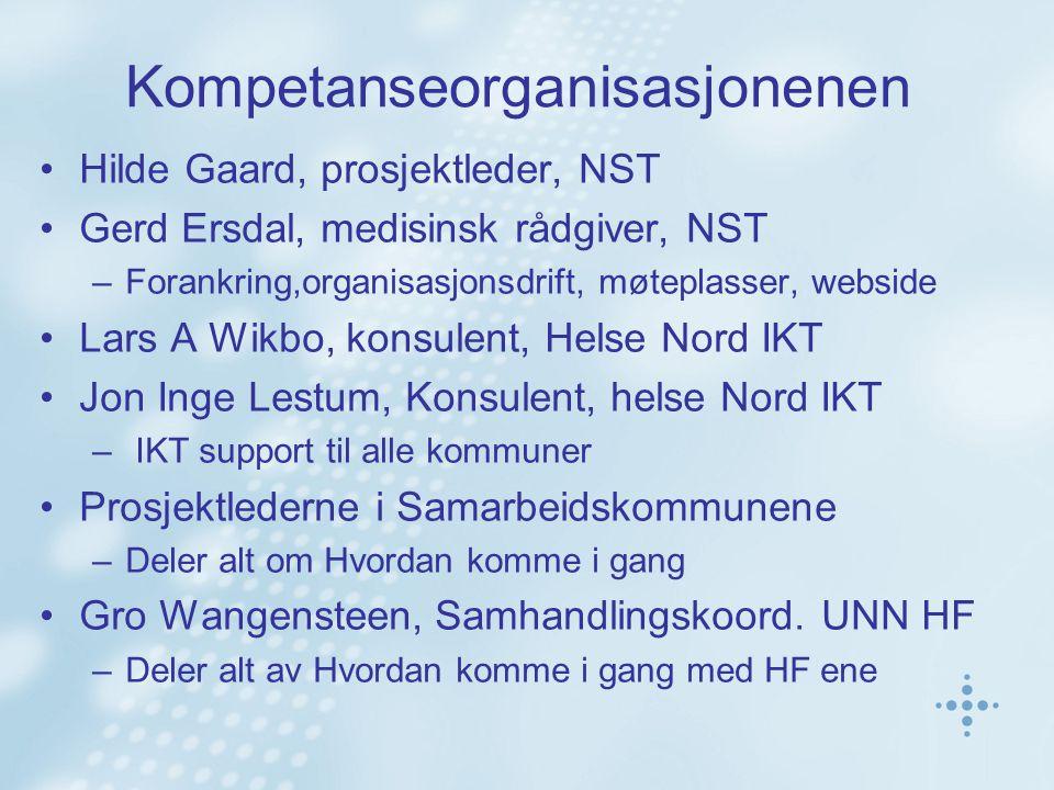 Kompetanseorganisasjonenen Hilde Gaard, prosjektleder, NST Gerd Ersdal, medisinsk rådgiver, NST –Forankring,organisasjonsdrift, møteplasser, webside L