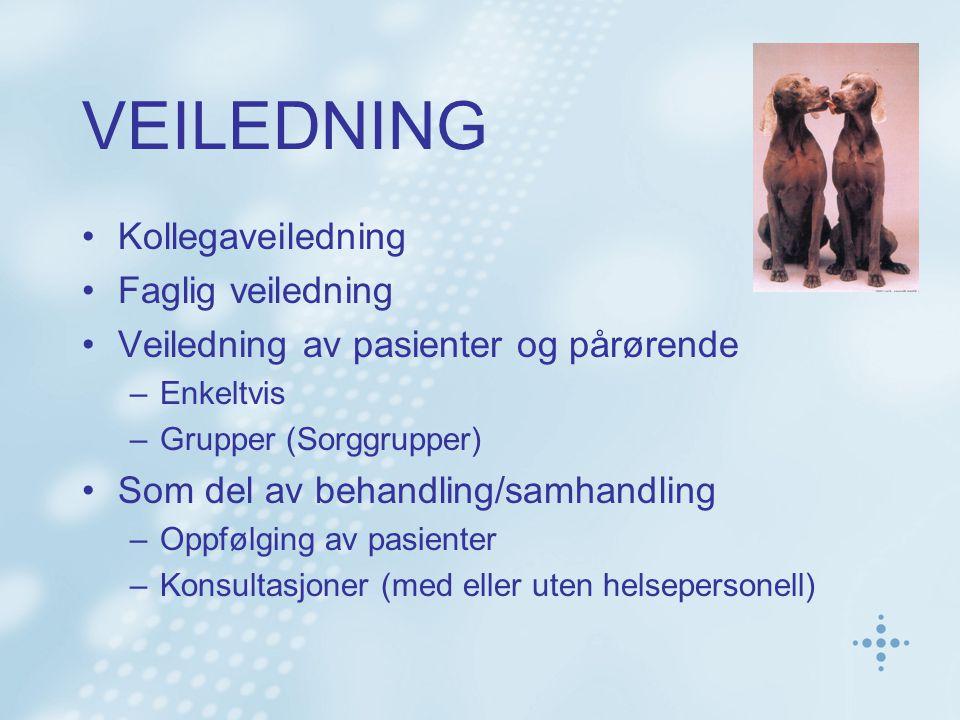 VEILEDNING Kollegaveiledning Faglig veiledning Veiledning av pasienter og pårørende –Enkeltvis –Grupper (Sorggrupper) Som del av behandling/samhandlin