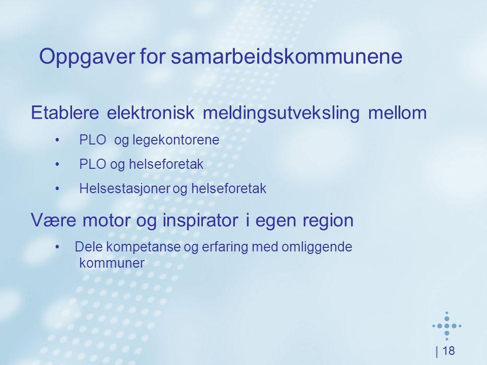 | 18 Oppgaver for samarbeidskommunene Etablere elektronisk meldingsutveksling mellom PLO og legekontorene PLO og helseforetak Helsestasjoner og helseforetak Være motor og inspirator i egen region Dele kompetanse og erfaring med omliggende kommuner