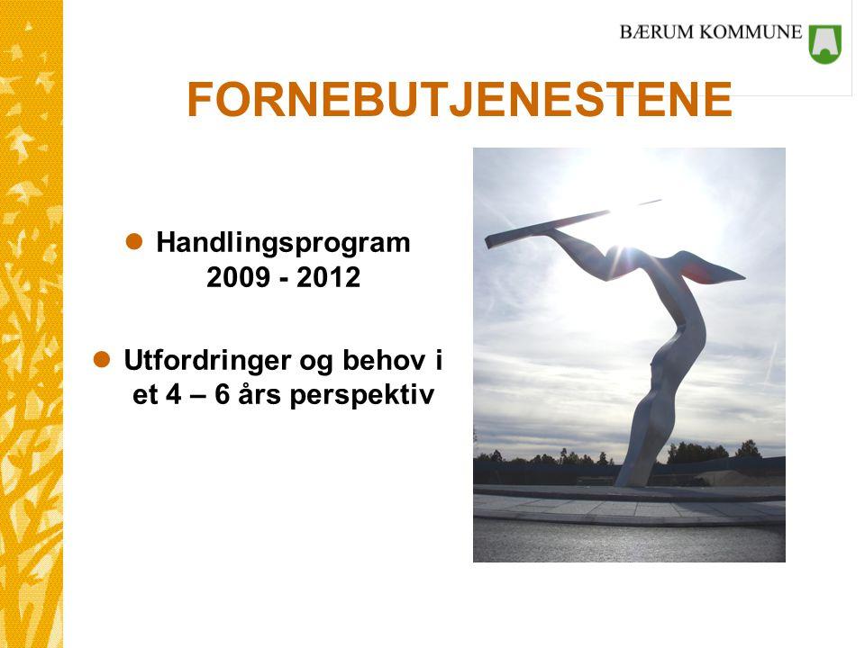 FORNEBUTJENESTENE lHandlingsprogram 2009 - 2012 lUtfordringer og behov i et 4 – 6 års perspektiv
