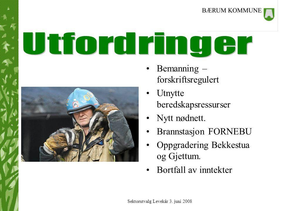Sektorutvalg Levekår 3.