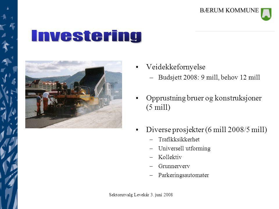 Sektorutvalg Levekår 3. juni 2008 Investering