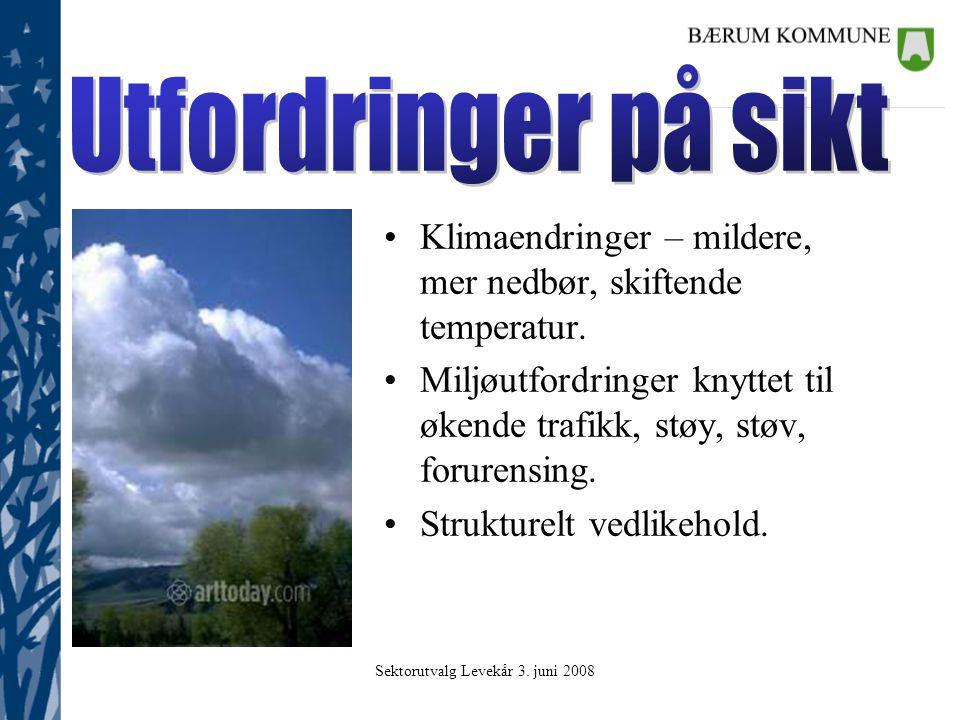 Sektorutvalg Levekår 3. juni 2008 Hvordan bidra til kommunens økonomiske utfordringer uten at dette –Reduserer trafikksikkerheten. –Fører til økte utg