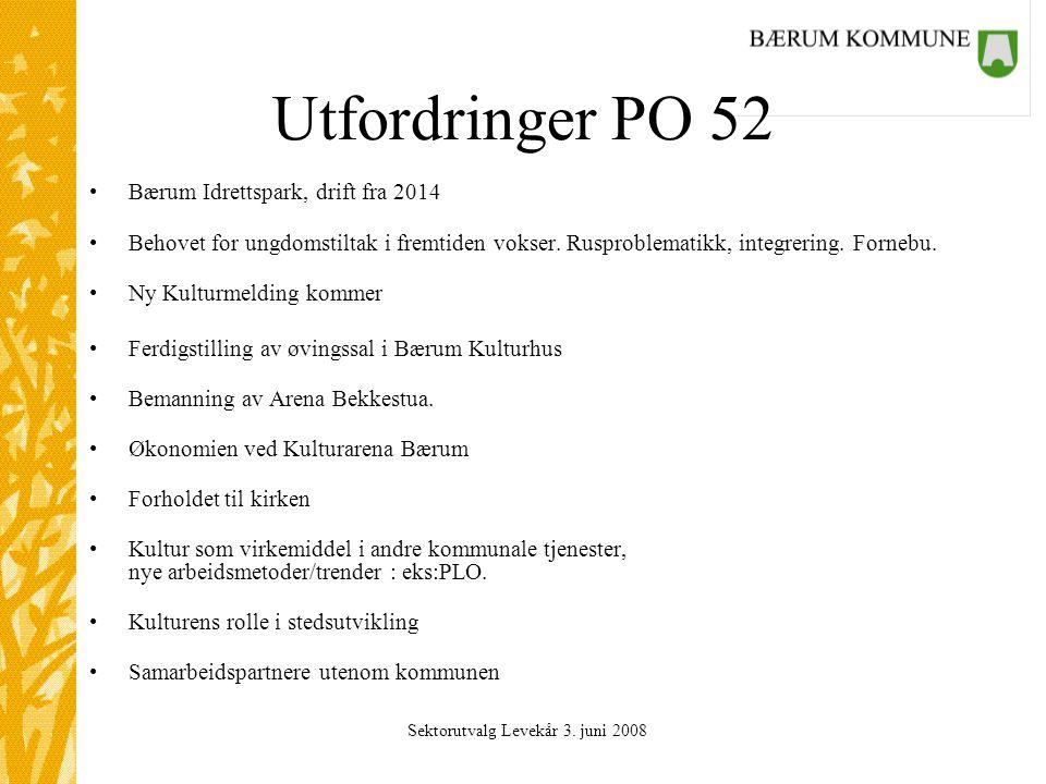 Sektorutvalg Levekår 3. juni 2008 Utfordringer PO 52 Bærum Idrettspark, drift fra 2014 Behovet for ungdomstiltak i fremtiden vokser. Rusproblematikk,