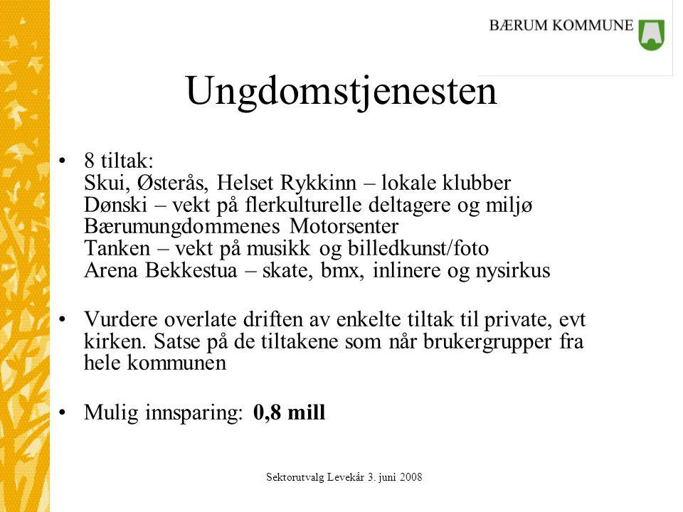 Sektorutvalg Levekår 3. juni 2008 Ungdomstjenesten 8 tiltak: Skui, Østerås, Helset Rykkinn – lokale klubber Dønski – vekt på flerkulturelle deltagere