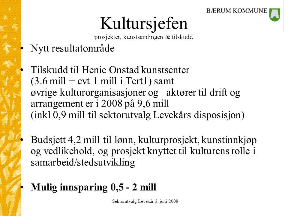 Sektorutvalg Levekår 3. juni 2008 Kultursjefen prosjekter, kunstsamlingen & tilskudd Nytt resultatområde Tilskudd til Henie Onstad kunstsenter (3.6 mi