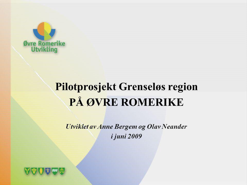 Pilotprosjekt Grenseløs region PÅ ØVRE ROMERIKE Utviklet av Anne Bergem og Olav Neander i juni 2009