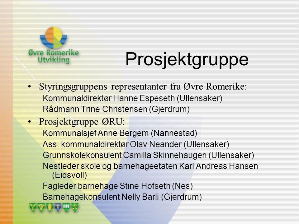 Prosjektgruppe Styringsgruppens representanter fra Øvre Romerike: Kommunaldirektør Hanne Espeseth (Ullensaker) Rådmann Trine Christensen (Gjerdrum) Pr