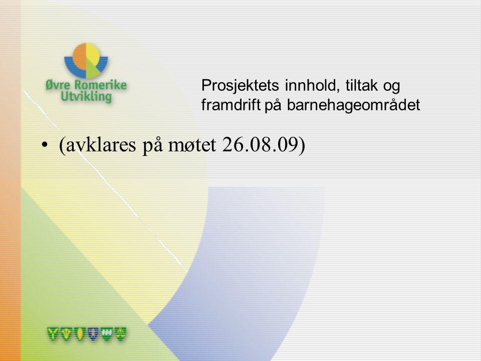 Prosjektets innhold, tiltak og framdrift på barnehageområdet (avklares på møtet 26.08.09)