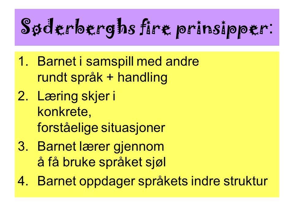 Søderberghs fire prinsipper : 1.Barnet i samspill med andre rundt språk + handling 2.Læring skjer i konkrete, forståelige situasjoner 3.Barnet lærer g