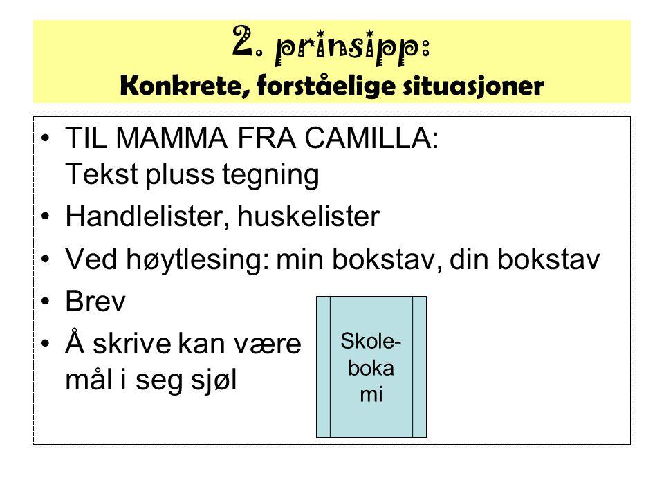 TIL MAMMA FRA CAMILLA: Tekst pluss tegning Handlelister, huskelister Ved høytlesing: min bokstav, din bokstav Brev Å skrive kan være mål i seg sjøl 2.