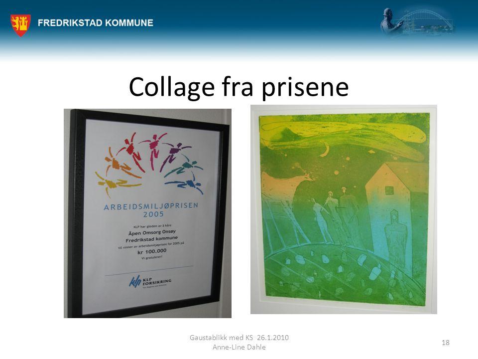 Collage fra prisene Gaustablikk med KS 26.1.2010 Anne-Line Dahle 18