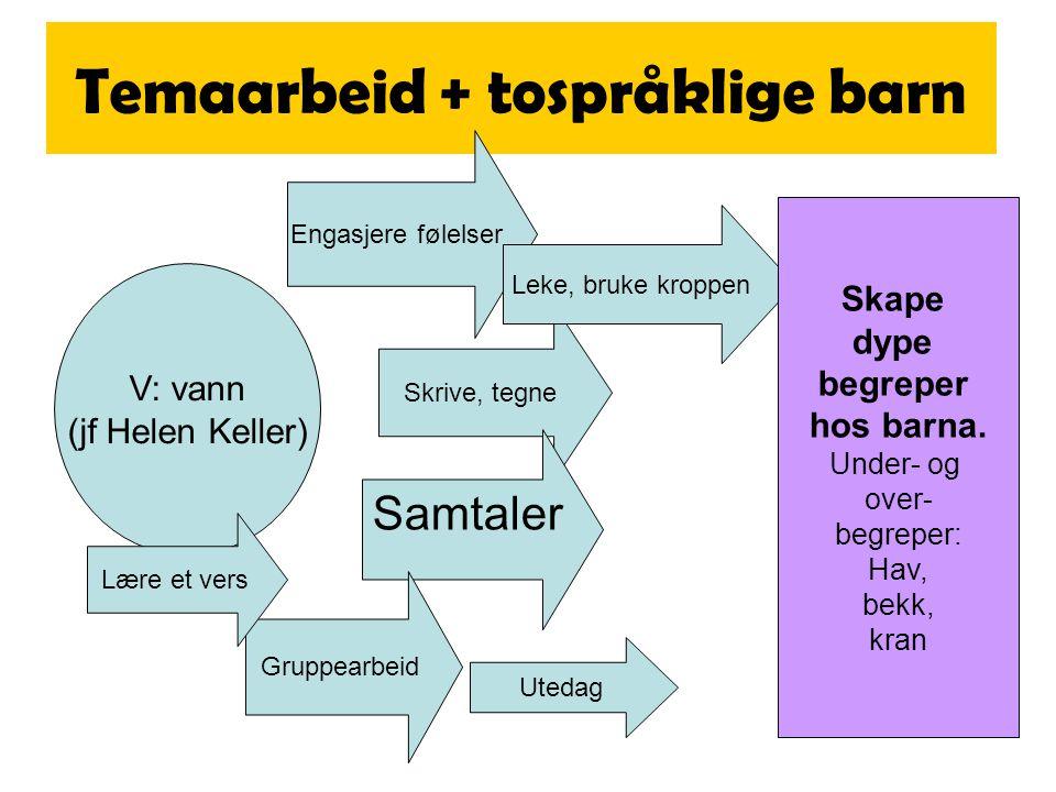 Begrepshierarki Vann UteInne i hus HavInnsjø Rennende vann Saltvann Tang Fersk- vann Elv Bekk Vann- kran Dusj Sølepytt !