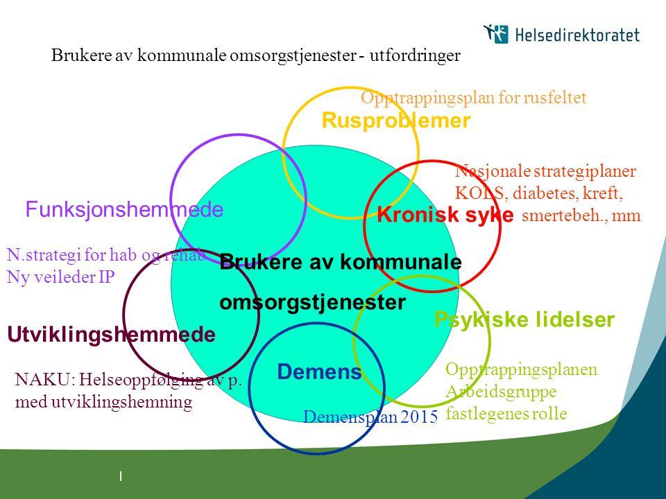 | Brukere av kommunale omsorgstjenester Kronisk syke Rusproblemer Demens Utviklingshemmede Funksjonshemmede Psykiske lidelser Brukere av kommunale oms