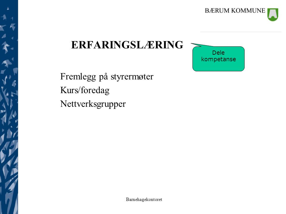 Barnehagekontoret ERFARINGSLÆRING Fremlegg på styrermøter Kurs/foredag Nettverksgrupper Dele kompetanse