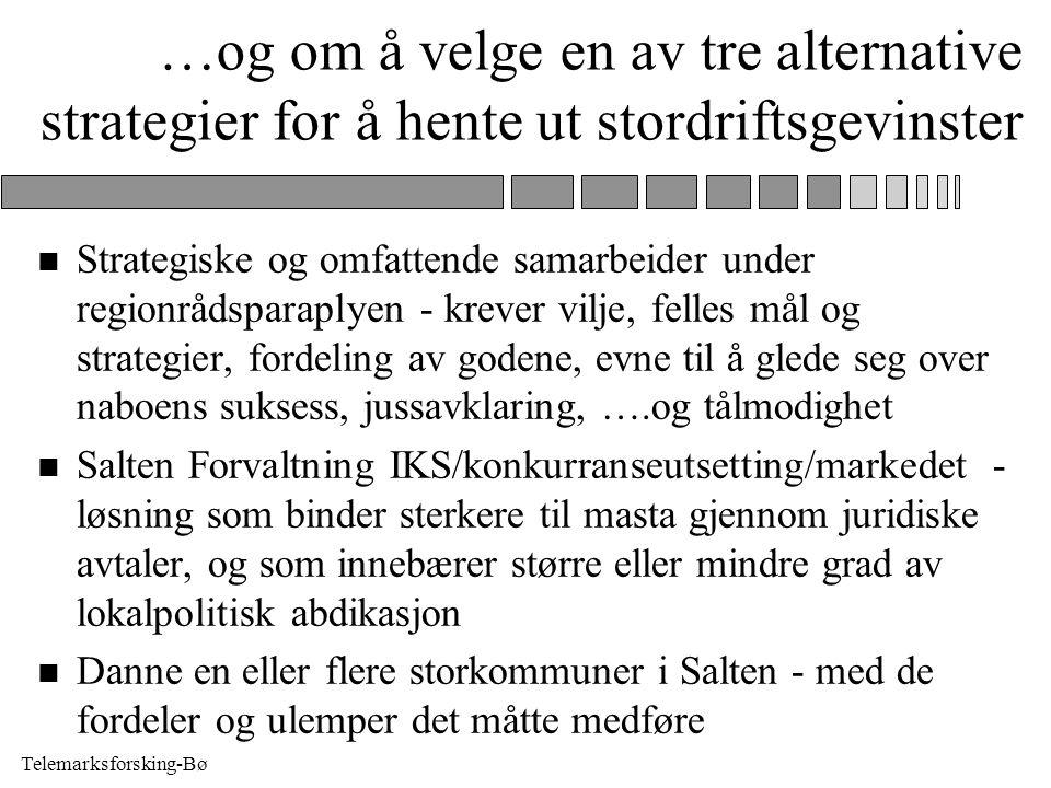 Telemarksforsking-Bø …og om å velge en av tre alternative strategier for å hente ut stordriftsgevinster n Strategiske og omfattende samarbeider under