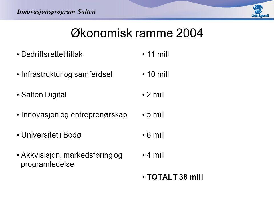 Innovasjonsprogram Salten Økonomisk ramme 2004 Bedriftsrettet tiltak Infrastruktur og samferdsel Salten Digital Innovasjon og entreprenørskap Universitet i Bodø Akkvisisjon, markedsføring og programledelse 11 mill 10 mill 2 mill 5 mill 6 mill 4 mill TOTALT 38 mill