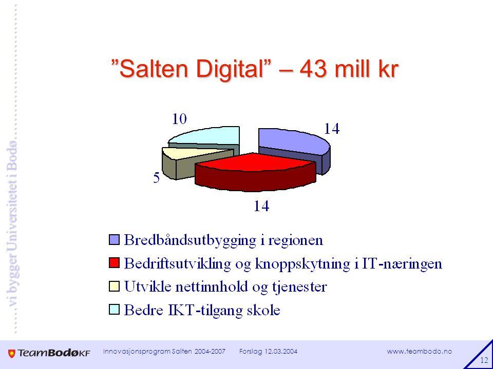 www.teambodo.no ……vi bygger Universitetet i Bodø………………………… Forslag 12.03.2004Innovasjonsprogram Salten 2004-2007 12 Salten Digital – 43 mill kr