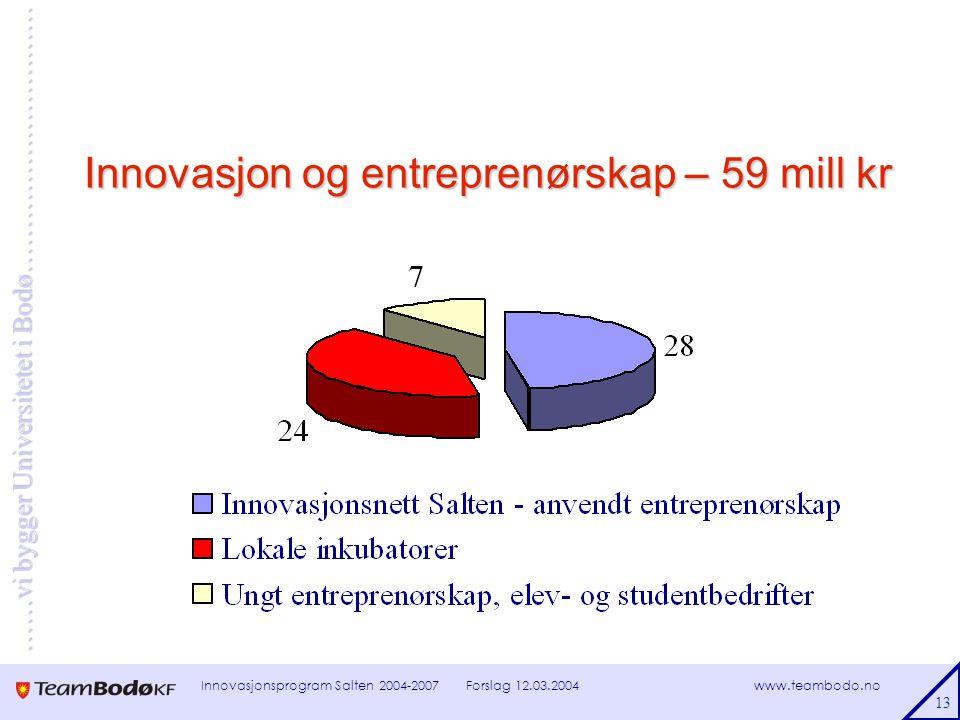 www.teambodo.no ……vi bygger Universitetet i Bodø………………………… Forslag 12.03.2004Innovasjonsprogram Salten 2004-2007 13 Innovasjon og entreprenørskap – 59 mill kr