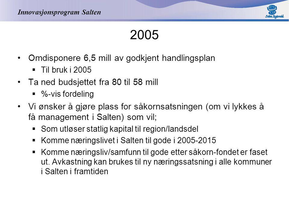 Innovasjonsprogram Salten Godkjent handlingsplan 2004 – omfordeling 6,5 mill Tiltak2004 Bedriftsrettede tiltak117 Infrastruktur og samferdsel108 Salten Digital21,5 Innovasjon og entreprenørskap 55 Universitetsdannelse66 Akkvisisjon, profilering, proramledelse 44 SUM3831,5