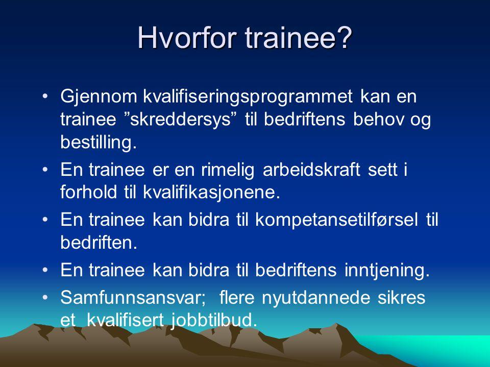 """Hvorfor trainee? Gjennom kvalifiseringsprogrammet kan en trainee """"skreddersys"""" til bedriftens behov og bestilling. En trainee er en rimelig arbeidskra"""