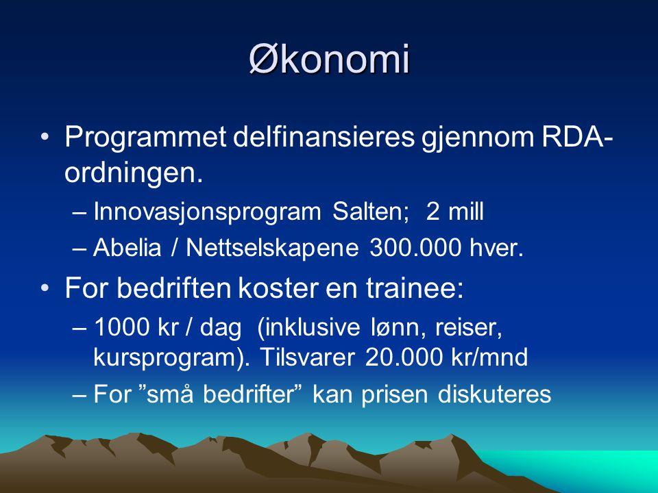 Økonomi Programmet delfinansieres gjennom RDA- ordningen. –Innovasjonsprogram Salten; 2 mill –Abelia / Nettselskapene 300.000 hver. For bedriften kost