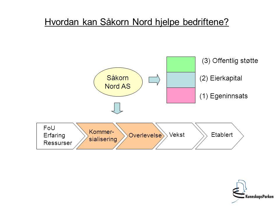 Kapitalstruktur i Såkornfond.Max eierandel er 25%.
