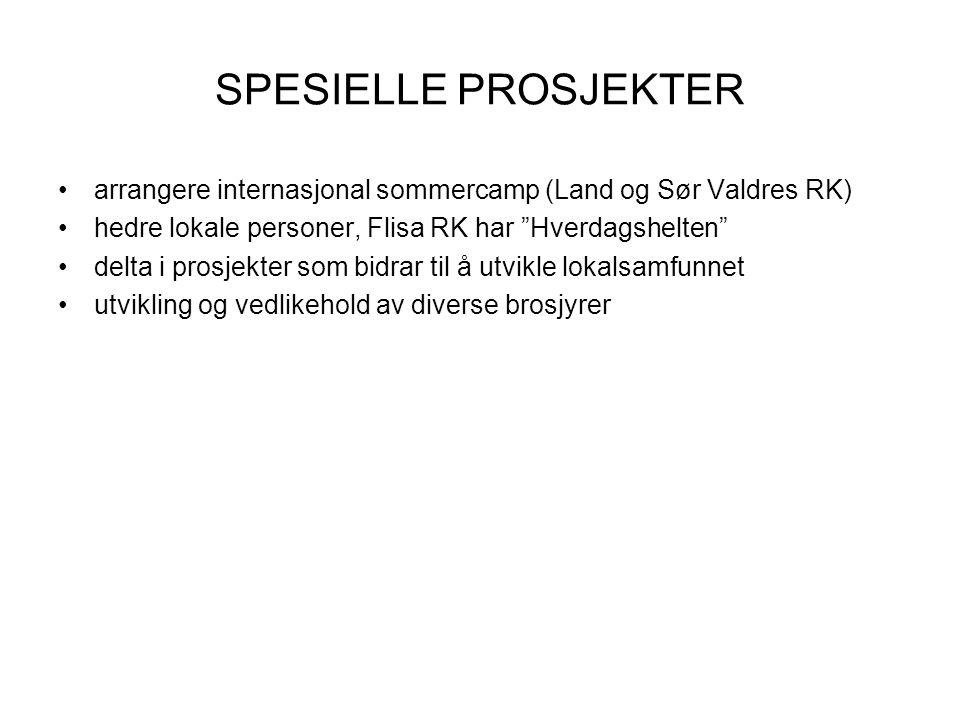 SPESIELLE PROSJEKTER arrangere internasjonal sommercamp (Land og Sør Valdres RK) hedre lokale personer, Flisa RK har Hverdagshelten delta i prosjekter som bidrar til å utvikle lokalsamfunnet utvikling og vedlikehold av diverse brosjyrer