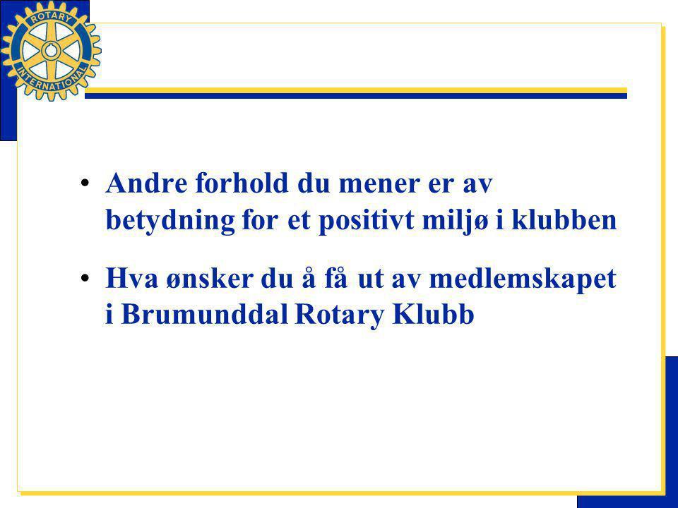 Andre forhold du mener er av betydning for et positivt miljø i klubben Hva ønsker du å få ut av medlemskapet i Brumunddal Rotary Klubb