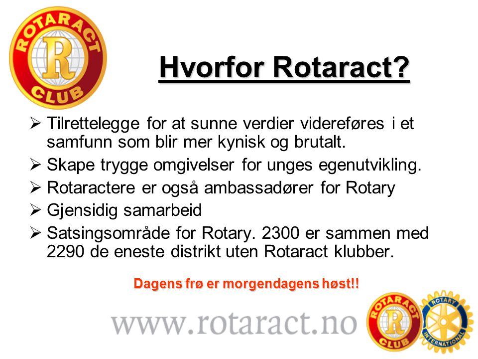 Hvorfor Rotaract?  Tilrettelegge for at sunne verdier videreføres i et samfunn som blir mer kynisk og brutalt.  Skape trygge omgivelser for unges eg