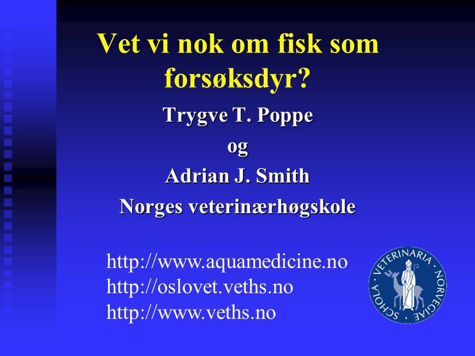Vet vi nok om fisk som forsøksdyr? Trygve T. Poppe og Adrian J. Smith Norges veterinærhøgskole http://www.aquamedicine.no http://oslovet.veths.no http