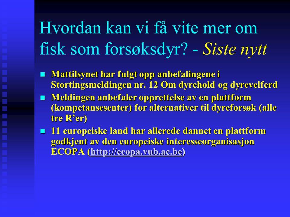 Hvordan kan vi få vite mer om fisk som forsøksdyr? - Siste nytt Mattilsynet har fulgt opp anbefalingene i Stortingsmeldingen nr. 12 Om dyrehold og dyr