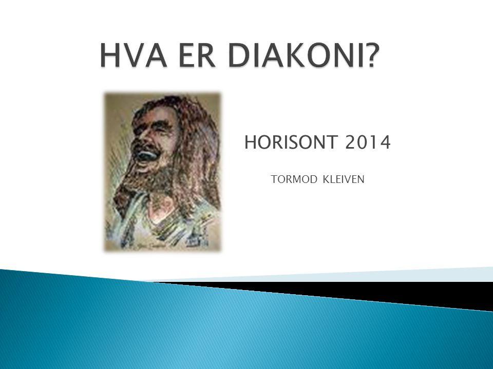 HORISONT 2014 TORMOD KLEIVEN