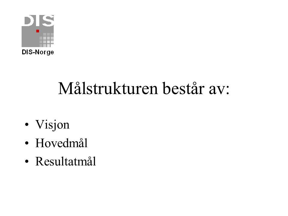 Visjonen skal: Dekke hele organisasjonens virksomhet Se den samlede virksomheten til DIS-Norge i sammenheng Gi en tverrgående angrepsvinkel Utvikle fe