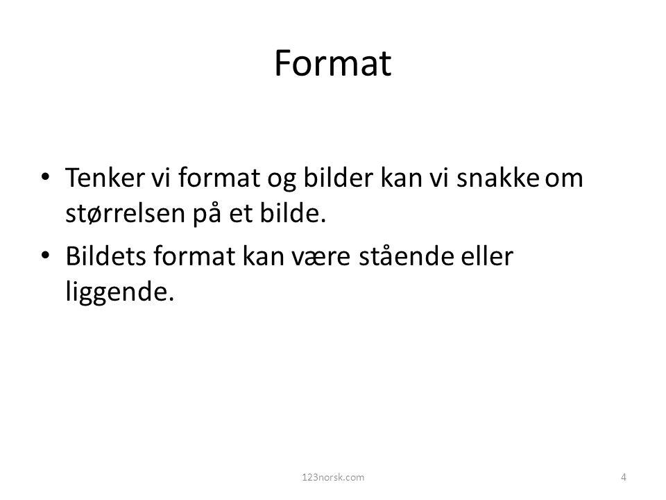 Format Tenker vi format og bilder kan vi snakke om størrelsen på et bilde. Bildets format kan være stående eller liggende. 123norsk.com4
