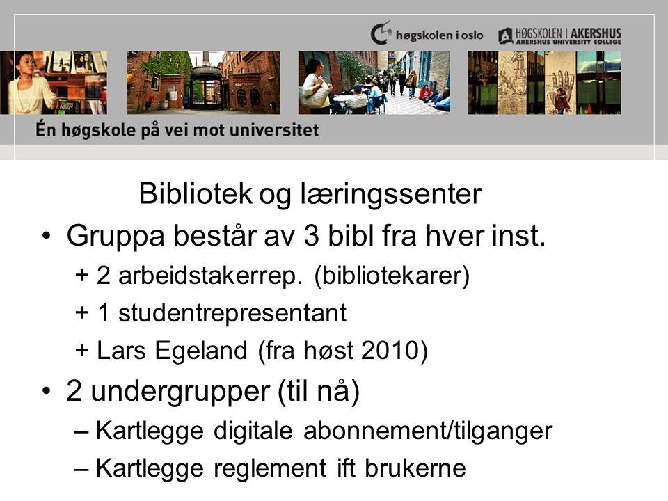 Gruppa består av 3 bibl fra hver inst. + 2 arbeidstakerrep. (bibliotekarer) + 1 studentrepresentant + Lars Egeland (fra høst 2010) 2 undergrupper (til