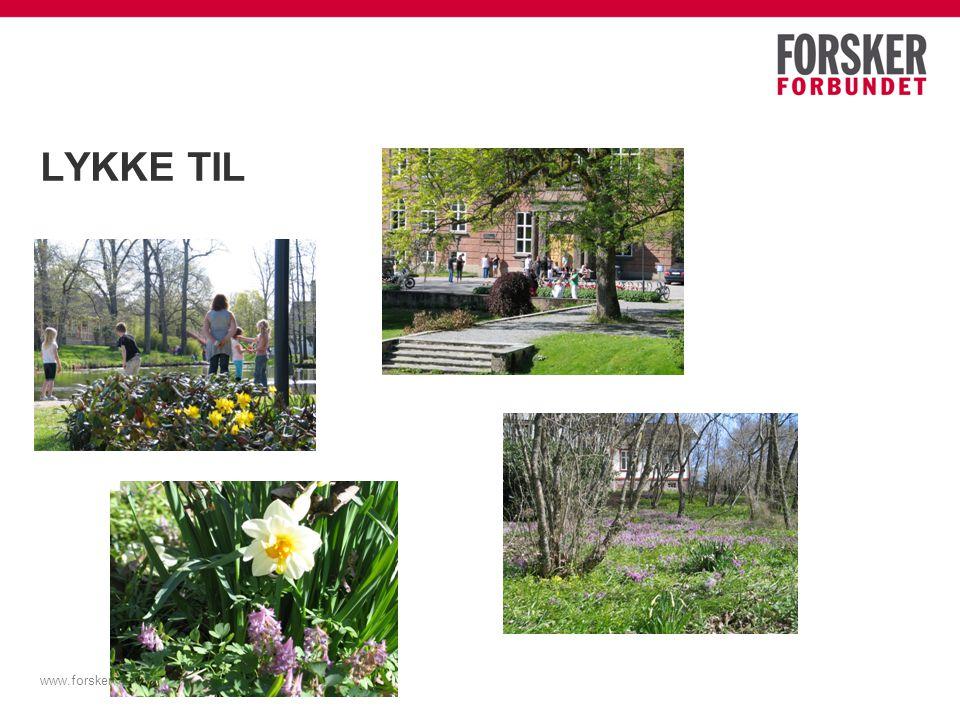 LYKKE TIL www.forskerforbundet.no