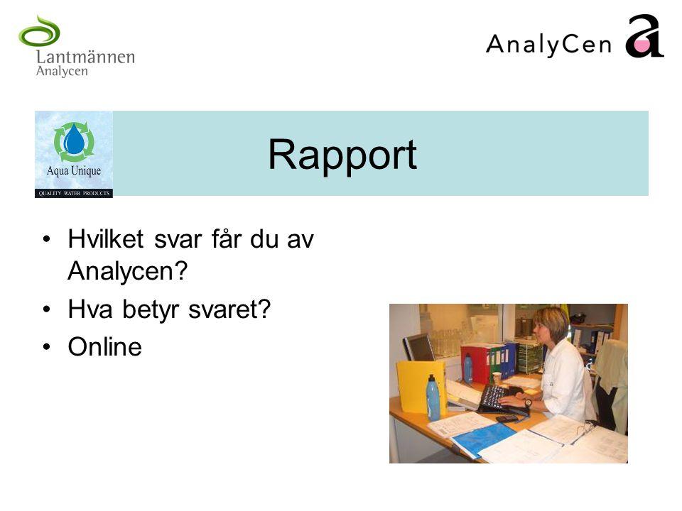 Rapport Hvilket svar får du av Analycen? Hva betyr svaret? Online