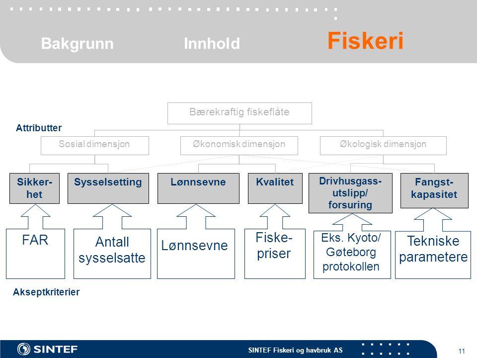 SINTEF Fiskeri og havbruk AS 11 Tekniske parametere Fangst- kapasitet Bærekraftig fiskeflåte Økonomisk dimensjonSosial dimensjon LønnsevneKvalitet Dri