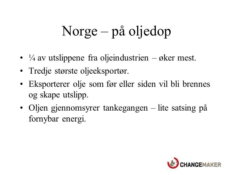 Norge – mye ord og lite handling