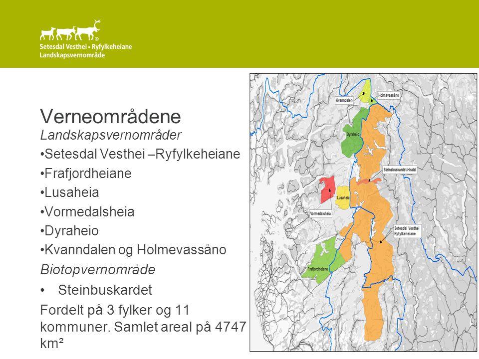 8 Verneformål Føremålet med vernet er: 1) Å ta vare på eit samanhengande, særmerkt og vakkert naturområde med urørte fjell, hei og fjellskogsområde med eit særmerkt plante- og dyreliv, stølsområde, beitelandskap og kulturminne.