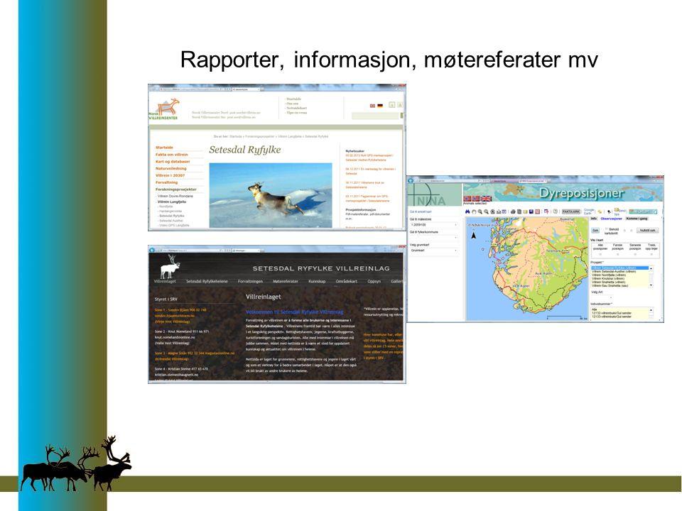 Rapporter, informasjon, møtereferater mv