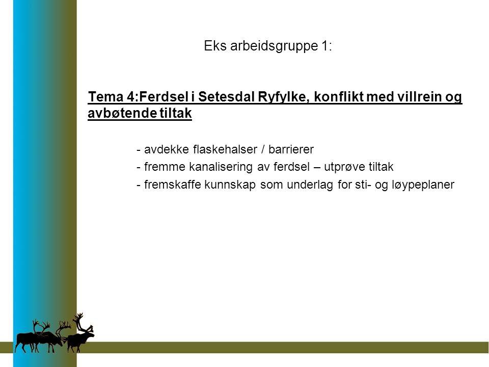 Eks arbeidsgruppe 1: Tema 4:Ferdsel i Setesdal Ryfylke, konflikt med villrein og avbøtende tiltak - avdekke flaskehalser / barrierer - fremme kanalisering av ferdsel – utprøve tiltak - fremskaffe kunnskap som underlag for sti- og løypeplaner
