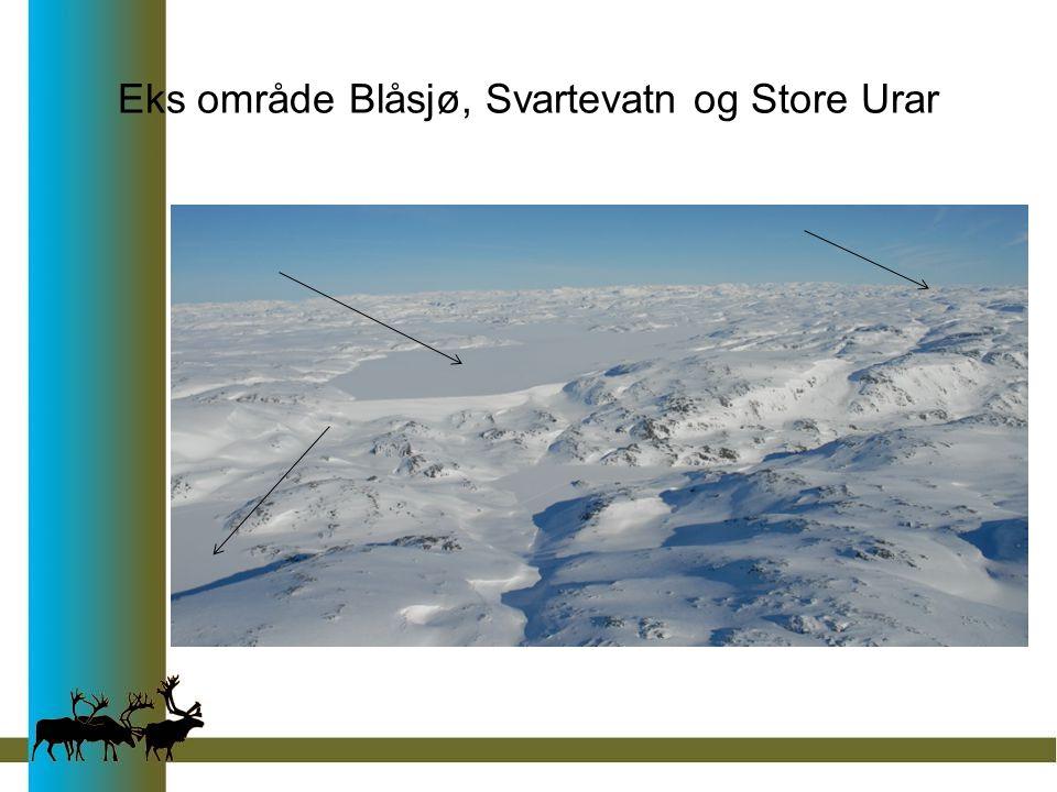 Eks område Blåsjø, Svartevatn og Store Urar