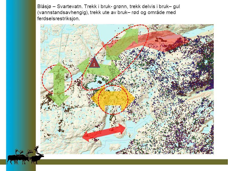 Blåsjø – Svartevatn. Trekk i bruk- grønn, trekk delvis i bruk– gul (vannstandsavhengig), trekk ute av bruk– rød og område med ferdselsrestriksjon.