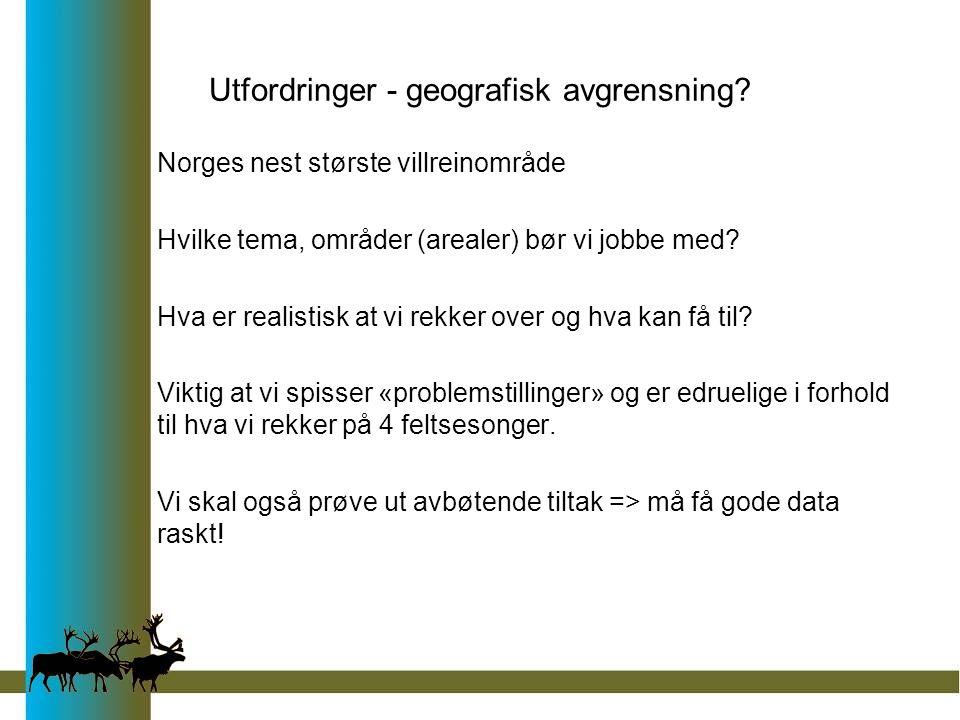 Utfordringer - geografisk avgrensning? Norges nest største villreinområde Hvilke tema, områder (arealer) bør vi jobbe med? Hva er realistisk at vi rek