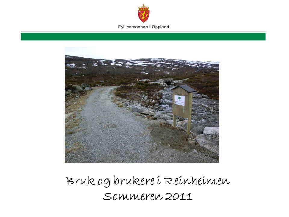 Bruk og brukere i Reinheimen Sommeren 2011